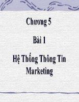Bài giảng điện tử môn tin học: Hệ Thống Thông Tin Marketing potx