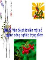 Giáo án điện tử môn Địa Lý: Địa lý Việt Nam pps