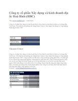 Phân tích tình hình tài chính Công ty cổ phần Xây dựng và kinh doanh địa ốc Hoà Bình potx