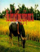 Giáo án điện tử môn Địa Lý: Đặc điểm nền nông nghiệp nước ta pps