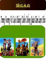 Bài giảng điện tử lịch sử: Trưng vương potx