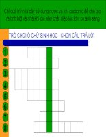 Bài giảng điện tử môn sinh học: tổng kết về cây có hoa pptx