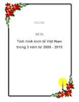 Baì tiểu luận: tình hình kinh tế Việt Nam trong 3 năm 2008 - 2010 docx