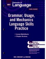 Grammar, Usage, and Mechanics Language Skills Practice phần 1 docx
