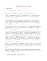 Lý thuyết Kinh mạch và Huyệt đạo: HỆ THỐNG KINH LẠC MẠCH ppsx