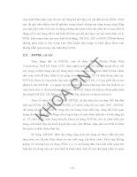 Thiết kế hệ thống công cụ tìm kiếm SEO hỗ trợ di động (Nguyễn Thanh Phong vs Nguyễn Ngọc Phượng) - 2 pps