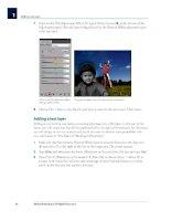 Adobe Photoshop CS4 Digital Classroom phần 2 pot