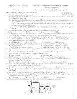 ĐỀ THI TUYỂN SINH VÀO ĐẠI HỌC, CAO ĐẲNG Môn thi: HÓA HỌC - SỐ 6 pps