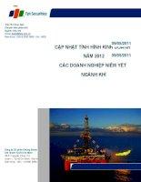 cập nhật tình hình kinh doanh năm 2012 các doanh nghiệp niêm yết ngành khí ngày cập nhật 27 tháng 3 năm 2012 ngành khí công ty cổ phần chứng khoán fpt