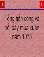 Tổng tiến công và nổi dậy mùa xuân năm 1975 (1) pot