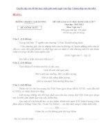 Tuyển tập các đề thi học sinh giỏi môn ngữ văn lớp 7 (kèm đáp án chi tiết)