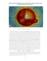 Giáo trình hình thành quy trình điều chế các phản ứng nhiệt hạch hạt nhân hydro p1 ppsx