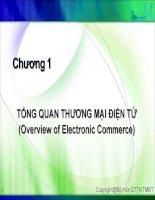 Slide bài giảng Thương mại điện tử căn bản pdf