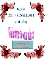 Lesson plan English  6  Unit 1  A Closer Llook 1 (Power Point)