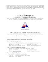 bản cáo bạch công ty cổ phần sông đà 1.01 chào bán cổ phiếu ra công chúng 2010