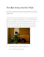 Trà đạo trong văn hóa Nhật docx