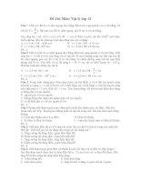Đề Thi Môn: Vật lý lớp 12 pptx