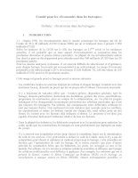 Comité pour les «Economies dans les barrages» potx