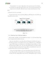 Giáo trình hình thành các chế độ cấu hình đường cố định cho router gói tập tin p4 pps