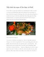 Một chút tản mạn về ẩm thực xứ Huế ppt