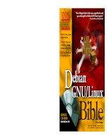debian gnu linux bible phần 1 ppt