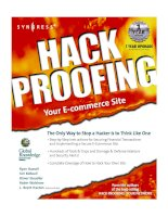 ecomm book hack proofing your ecommerce site phần 1 docx