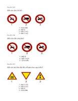 Câu hỏi trắc nghiệm an toàn giao thông - Nguyễn đình Sắc - 3 potx