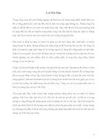 Tiểu luận môn Thương Mại Điện Tử ( 5GIAY VN )