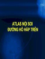 atlas nội soi