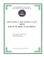 BẢN BÁO CÁO THẢO LUẬN MÔN KINH TẾ HỌC LAO ĐỘNG pdf