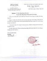 tập đoàn sông đà công ty cổ phần thủy điện cần đơn báo cáo tài chính quý 2 năm 2013