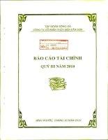 tập đoàn sông đà công ty cổ phần thủy điện cần đơn báo cáo tài chính quý 3 năm 2010