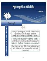 slides ngôn ngữ học đối chiếu (1-11) (3) doc