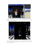 Giáo trình photoshop: Hướng dẫn điều chỉnh và khởi tạo một bức ảnh minh họa phần 8 doc