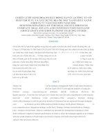 CHIẾN lược KINH DOANH bất ĐỘNG sản của CÔNG TY cổ PHẦN DỊCH vụ và xây DỰNG địa ốc đất XANH (đất XANH GROUP) từ năm 2012 đến năm 2020