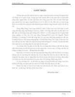 KTTS NHOM 2(ca lua) pdf