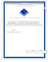 nghiên cứu mức độ hài lòng khách hàng đối với dịch vụ chuyển tiền trong nước của ngân hàng tmcp sài gòn thương tín (sacombank)