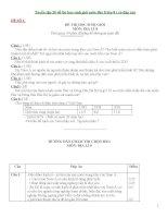 Tuyển tập 20 đề thi học sinh giỏi môn địa lí lớp 8 ( có đáp án)