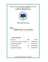 Tiểu luận hợp đồng lao động (pháp luật đại cương)