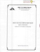 báo cáo tài chính hợp nhất quý 2 năm 2013 công ty cổ phần someco sông đà