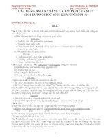 đáp án các đề thi học sinh giỏi môn tiếng việt lớp 5 chọn lọc tham khảo (1)