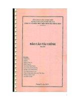 công ty cổ phần thủy điện srok phu miêng idico báo cáo tài chính năm 2010