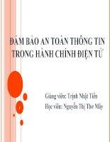 ĐẢM BẢO AN TOÀN THÔNG TIN TRONG HÀNH CHÍNH ĐIỆN TỬ