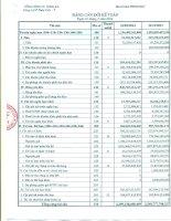 công ty cổ phần thép việt ý bảng cân đối kế toán báo cáo lưu chuyển tiền tệ báo cáo kết quả hoạt động kinh doanh báo cáo tài chính 31 tháng 3 năm 2014