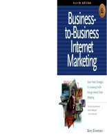 business to business internet marketing seven proven strategies for increasing profits through internet direct marketing