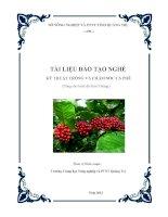Tài liệu đào tạo nghề : Kỹ thuật trồng và chăm sóc cà phê