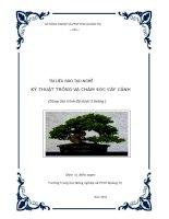 Tài liệu đào tạo nghề Kỹ thuật trồng và chăm sóc cây cảnh
