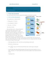 kiến thức cơ bản về adn,arn và protein