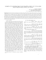 NGHIÊN CỨU MÔ HÌNH THUỶ LỢI NỘI ĐỒNG TRÊN CÁC VÙNG SINH THÁI Ở ĐỒNG BẰNG SÔNG CỬU LONG