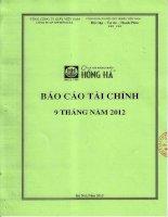công ty cổ phần văn phòng phẩm hồng hà báo cáo tài chính 9 tháng 2012